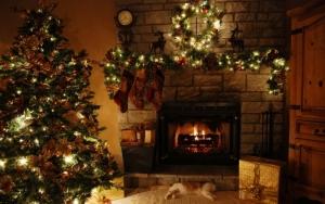 Evita incendios y accidentes con los arboles de navidad